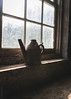 (Greyson Rose) Tags: kettle metal window old paint cracked light webs