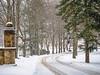 reindeer_run (gerhil) Tags: landscape driveway entrance snow road trees stone pillar park cvnp winter weather storm cold stark serene autumn december2017 nikcolorefexpro4
