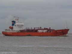 Coral Pavona (U. Heinze) Tags: ship schiff boat cuxhaven elbe wasser meer vessel