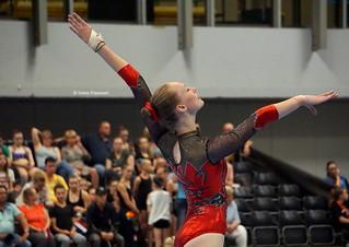 Fantastic Gymnastics 2017
