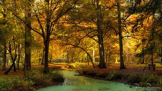 Autumn Liesbos Etten-Leur