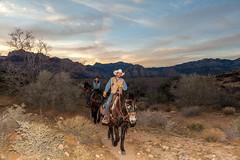 0246937356-94-Sunset BBQ ride-1 (Jim There's things half in shadow and in light) Tags: america cowboytrailrides horsebackriding lasvegas mojavedesert nevada places redrockcanyon usa vegas nearlasvegas redrock sunset