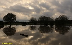 Reflections at Janesmoor (andywsx) Tags: canoneos7d newforest janesmoorpond hampshire reflections water clouds