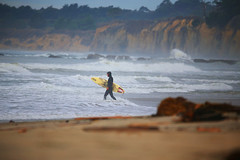 Surfer (ashockenberry) Tags: surfer travel outdoor beach surf wind waves ocean