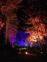 Gouveneurstuin (10-us) Tags: evening light colors gouveneurstuin 2017 drentsmuseum theamericandream cityofdreams assen