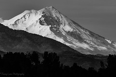 171118 Mt Shasta BW profile (imtnbike) Tags: sunset mtshasta norcal d7200 nikon landscape mountain snow blackwhite redding