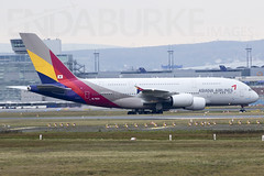 Asiana HL7634 18-11-2017 (Enda Burke) Tags: tcsen jyayv hl7634 asiana sunsexpress royaljordanian avgeek aviation airplane eddf frankfurt fra fraport germany german canon canon7dmk2 flight travel takeoff taxiing runway landing landingear planes plane a321 airbusa321 a380 a380800 airbusa380 airbusa380800 boeing boeing737 b737800 boeing737800