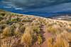 Caminando por la pampa - Reserva Nac. Laguna Jeinimeni (Patagonia Chile)