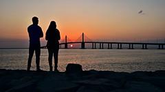 Sunset Spectators (Sanjiban2011) Tags: abudhabi uae sunset sun evening nature waterfront bridge albateenbridge silhouette silhuette landscape nikon d750 fullframe tamron tamron2470
