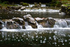Manantial (Mimadeo) Tags: water stream nature spring waterfall waterfalls bubbles river park natural landscape green flowing wild cascade beautiful fresh motion rock scenic stone clean freshness