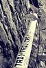 Balade d'automne 4 (Kimoufli) Tags: liège chartreuse oblats parcdesoblats bois noir blanc black white noiretblanc noirteblanc blackandwhite monochrome détail feuille urban stikers graff graffiti art tri