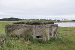 Vigilant (Worthing Wanderer) Tags: northumberland july overcast summer coast seaside castle beach dull