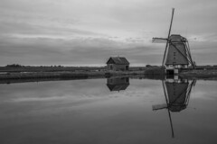 - Texels Landscape - (Manuel Kaboth) Tags: wideangle canon60d unique bw blackandwithe blackwhite landscape landschaft netherlands 2016 fall herbst autumn windmill texel island water sea