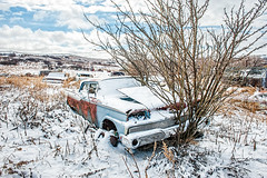 Sudden Stop (DeVaughnSquire) Tags: saskatchewan vintage old abandoned winter snow scenic scene white frost cold car automobiles clouds tree bush stranded farmstead rural canada prairies prairie