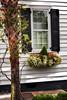 Charleston Old Towne Window (Reid Northrup) Tags: charleston charlestonoldtowne southcarolina window windowbox historichome architecture nikon reidnorthrup tree door palmtree