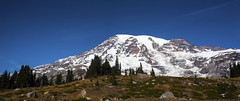 Mt. Rainier from Skyline Trail (wplynn) Tags: mtrainiernationalpark mountrainiernationalpark mtrainier mountrainier mt mount mountain rainier volcano volcanic washington state cascade cascaderange skylinetrail