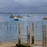 Bateaux de travail, bateaux de plaisance, lumière de novembre, Piraillan, presqu'île du Cap Ferret, Bassin d'Arcachon, Gironde, Aquitaine, France. thumbnail