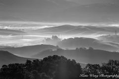 foggy morning (katiewong511) Tags: pleasanton fog morning rolling hill sunrise ridge park regional east bay