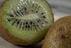 Kiwi (Lo8i) Tags: 52weeksofpix2017 52weeks2017 theseareafewofmyfavouritethings flickrlounge fruit kiwi macro stilllife 7daysofshooting week22 favouritefruitsorvegetables texturetuesday