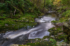 Hoëgne Waterfall. (gillesfrancotte) Tags: 2017 ardennes autumn d800 hoëgne nikon outdoor september septembre automne cascade creek eau fall landscape longexposure nature river stream torrent water waterfall waterscape jalhay wallonie belgique be moss foam filé