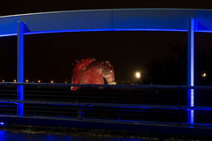 2017-11-13 (Day 317) Blue Bridge, Red Horses