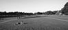 Stanford Oval Park, Stanford University, Palo Alto, California (trphotoguy) Tags: stanforduniversity stanford contaxrx kodaktmax100 100tmx film carlzeissdistagon18mmf4 stanfordovalpark paloalto california carlzeissdistagon18mmf4mmj