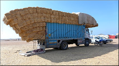 heavy load (mhobl) Tags: sidiifni market stroh straw lorry lkw maroc morocco blue