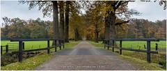 Twickel, Netherlands (CvK Photography) Tags: autumn canon color cvk estate europe fall nature netherlands outdoor overijssel twente twickel autumncolors