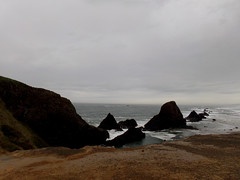 Seal Rock (Nikki Cleveland) Tags: sea rock cliff ocean coast oregon sealrock stateparks parks view water landscape photography