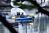 SERENE PADDLE, ACA PHOTO (alexanderrmarkovic) Tags: kayak paddleing acaphoto
