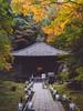 円通院 (かがみ~) Tags: temple panasonic matsushima 14140mmii japan gx8 miyagi sendai 14140ii 仙台 宮城 寺 日本 松島 miyagigun miyagiken jp