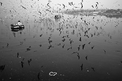 With Love Yamuna Ghat (Rk Rao) Tags: bw blackandwhite blackandwhitephoto art artistic fineart fineartphotography flyingbirds yamunaghat exlporeindia boating places people monochromeart monchrome yamunariver radhakrishnarao rkrao explore newdelhi delhi india