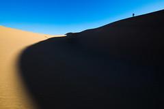 Convergence (davebrosha) Tags: davebroshaworkshop africa forest landscape namibia nature skeletoncoast stock travel adventure namib desert explore dunes