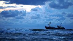 tonight shrimps? ;-)) (Wöwwesch) Tags: boat blue horizon clouds water waves ocean light northsea beach coast shoreline seagulls blauw blau golven noordzee nordsee wolken sony sonyalpha ilce6000 möven meeuwen relax walk fresh shrimps fishing