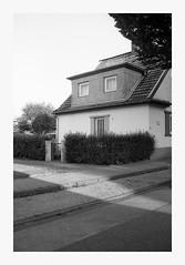 83f516 by maerleanders - Nikon FM2n, Kodak Tri-X400, Epson V370