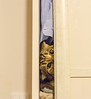 Living in a wardrobe (isserge) Tags: funnycat cats spyingcat cateyes pets funniestpetphotos funnyanimals