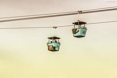 Skyfari aerial tram (Jodi Newell) Tags: aerial animal artsy california canon jodisjourneys jodinewellgmailcom sandiegozoo skyfari tram yellow