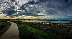 Cosumnes River Preserve Wetlands Panorama (randyherring) Tags: ca california centralcaliforniavalley cosumnesriverpreserve elkgrove afternoon aquaticbird nature outdoor recreational waterfowl wetlands panorama sunset clouds