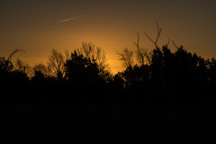 Sunrise Sillouette (@bill_11) Tags: oldhoverport unitedkingdom isleofthanet england kent pegwellbay