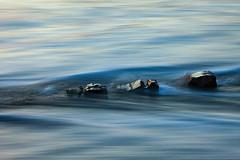 Painted Waves (Harold van den Berge) Tags: beach golf golfbreker haroldvandenberge landscape landschap leefilter longexposure netherlands nieuwvliet outdoor paalhoofd palen strand water wave zeeland zeeuwsvlaanderen