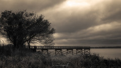 Days Gone By (Simmie   Reagor - Simmulated.com) Tags: 2017 connecticut connecticutphotographer evening fall landscape landscapephotography lighthousepointpark longislandsound nature naturephotography newengland newhaven october outdoors unitedstates cloudy ctvisit digital https500pxcomsreagor httpswwwinstagramcomsimmulated overcast water wwwsimmulatedcom us