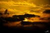 ..ترْحَلُ الشُمسْ.. يضِيعُ الكلَآم.. وَ تَبكِي الطُيُورْ (wessoufi) Tags: sunset goldenhour yellow orange black vivid vibrant canon sky clouds nature mountain landscape fineart earth oujda saidia paysage gold coucherdesoleil morocco وجدة المغرب غروب ciel