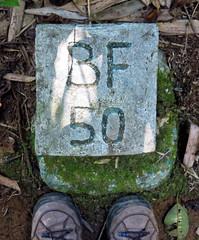 BF 50 (LeftCoastKenny) Tags: madagascar day7 ranomafananationalpark marker text shoes feet leaves