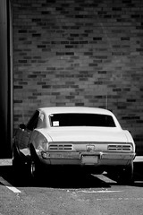 infrared bird (grafficartistg4) Tags: 1960s 200mm 2wd 70200mm 70mm 720nm aged american americanmuscle auto automobile automotive camera canon car digital digitalrebelxt dslr eos firebird generalmotors gm infrared infraredconversion infraredlight infraredphoto infraredphotography invisible ir irconversion irlight irphoto irphotography lifepixel lincolncity manmade musclecar old older oregon oregoncoast pontiac ponycar rearwheeldrive rwd canonef70200mmf4lisusm canon70200f4l