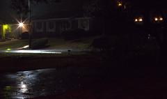 _MG_2904.CR2 (jalexartis) Tags: nightphotography night nightshots rain