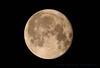 Hunters Full Moon....... (law_keven) Tags: moon themoon space nasa theskyatnight thenightsky nightphotography handheld spacephotography photography london england huntersmoon beavermoon fullmoon