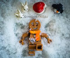 Ginger Angel (minifigphoto) Tags: lego legophotography legoart miniatureart miniaturephoto minifigs cute kawaii minifigure legoaddict legoaddiction legolove legofun upclose macro toyphotography lovephotography geek toyphotographers christmas santa snow gingerbread children hat bunny penguin