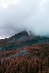 (Paul Hoi) Tags: paulhoi landscape california infrared sonya6000 colorinfrared supercolor fullspectrum lassen volcanic national park pink red