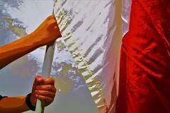 I had my very own resurrection.Shall I hang out the white and red flag (BarbaraBonanno BNNRRB) Tags: i resurrectionshall hang out white red flag ihadmyveryownresurrectionshallihangoutthewhiteandredflag myflagiswhiteandred