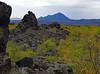 Volcanic Landscape (jameskirchner15) Tags: dimmuborgir iceland myvatn volcano geology scenic landscape geomorphology fallcolor leaves tree